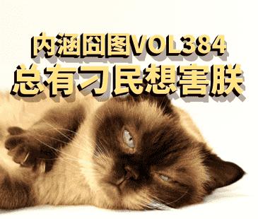 内涵囧图VOL384总有刁民想害朕