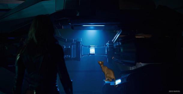 《驚奇隊長》特效揭秘 原來局長擼的是假貓