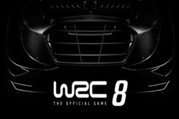 世界汽车拉力锦标赛8图片