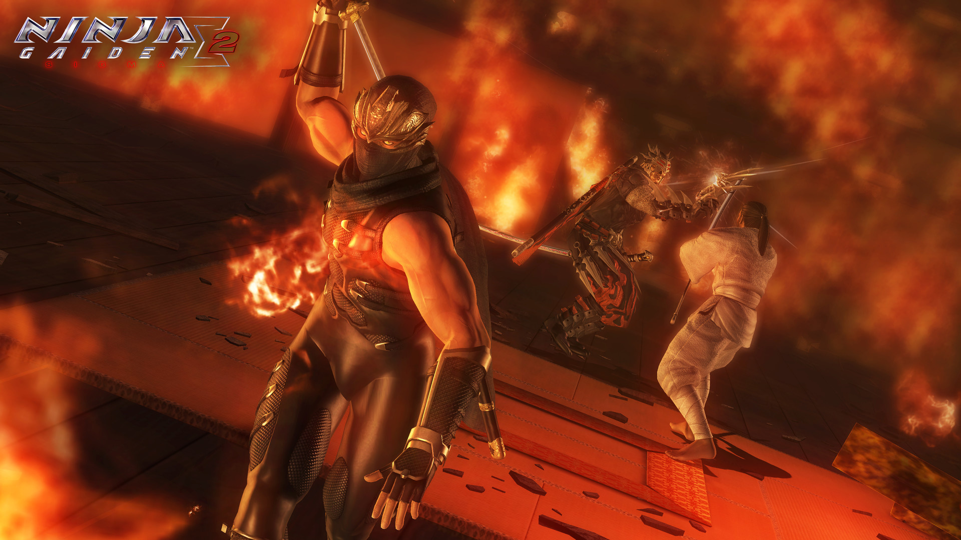 忍者龙剑传:大师收藏版图片
