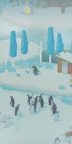 企鹅岛大发三分彩截图