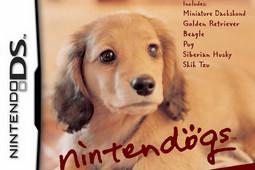 任天狗-腊肠犬和它的朋友图片
