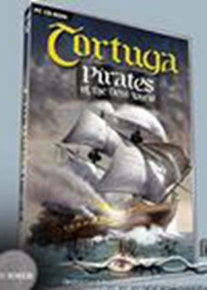 新世界的海盗新世界的海盗中文版下载攻略秘籍