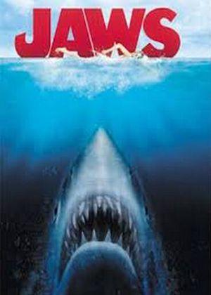 大白鲨大白鲨下载攻略秘籍
