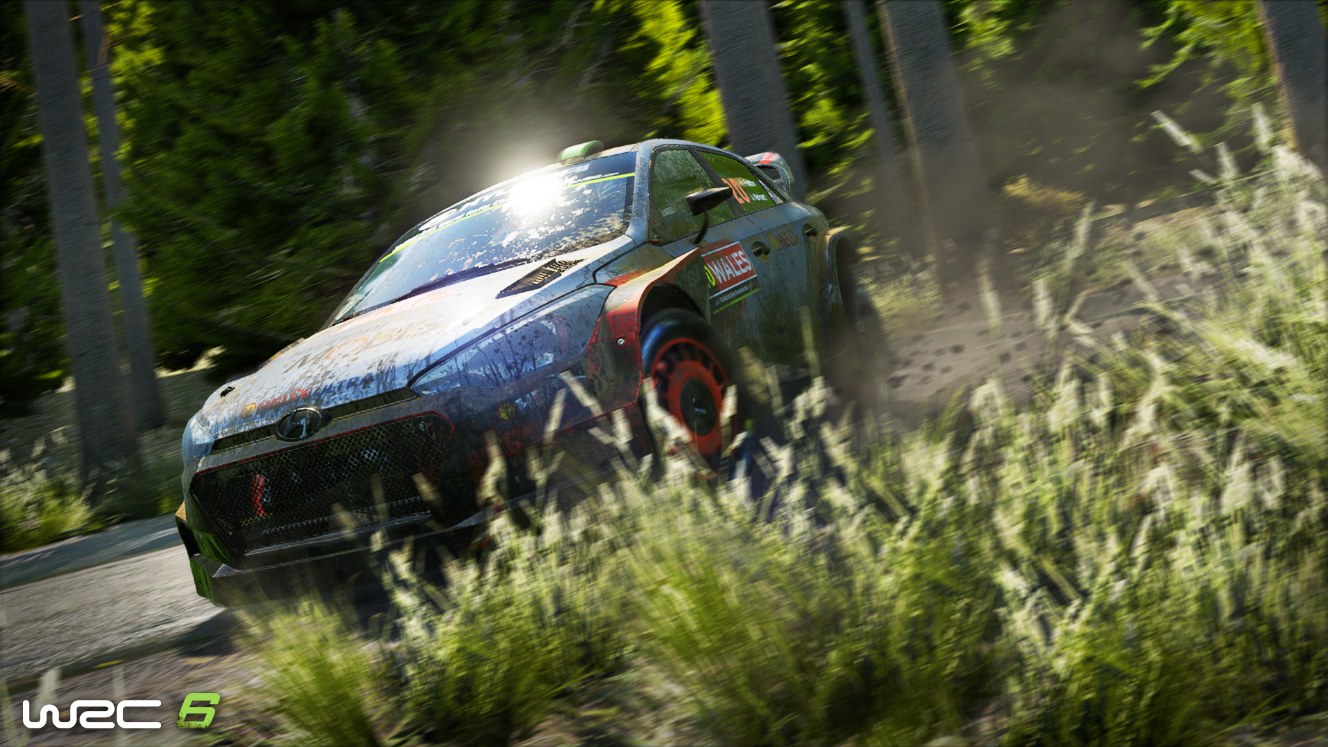 世界汽车拉力锦标赛6图片