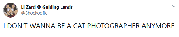 《怪物猎人:世界》最惨猫猫:昔日猎手终成猎物!