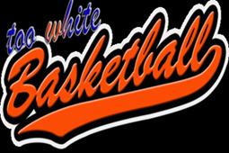 太白的篮球图片