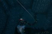 Valheim英灵神殿蛟龙圈起后消失原因介绍 蛟龙为什么消失