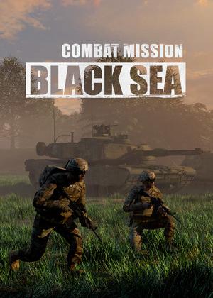 战斗任务:黑海图片