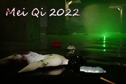 孙美琪疑案 2022