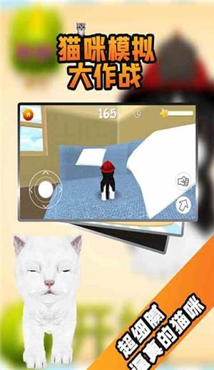 猫咪模拟大作战