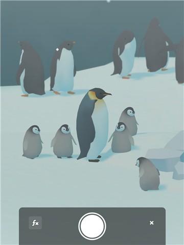 企鹅岛圣诞版