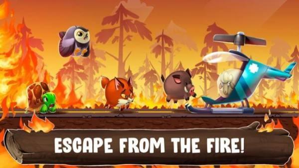 《动物园之路app开发步骤》