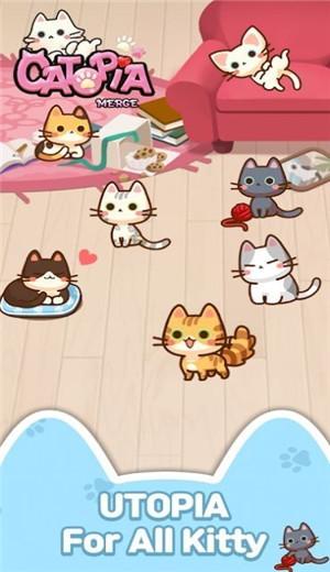 萌猫大本营自己app开发