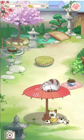 《猫宅日记游戏什么是app》
