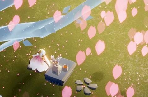 光遇樱花斗篷什么时候出