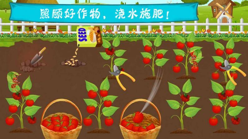 《托卡农场乐园app开发》