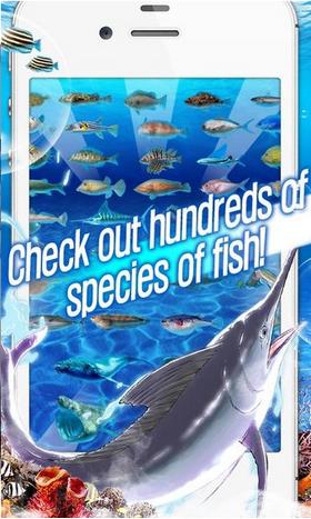 极限钓鱼2资讯类app开发
