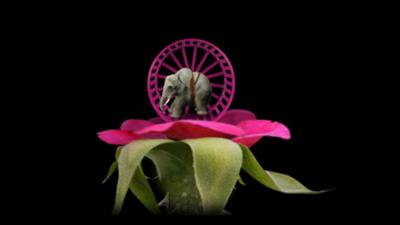 种子模拟器