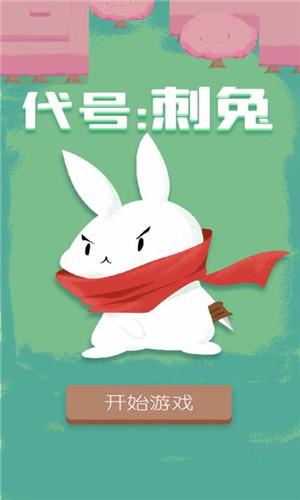 代号刺兔福州app开发