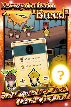 菇菇栽培研究室四季版app开发开发公司