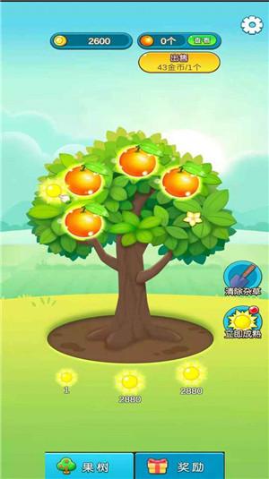 柚子熟了手机app开发制作