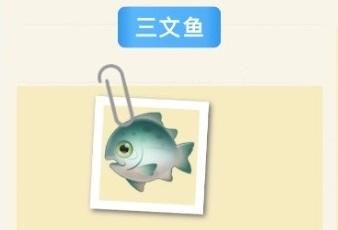 摩尔庄园手游三文鱼怎么钓