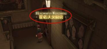 哈利波特魔法觉醒霍格沃茨厨房在哪