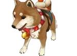 旅行物语柴犬技能及玩法攻略 旅行物语柴犬攻略