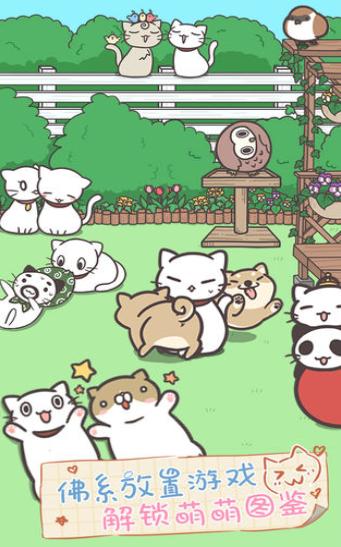 貓咪喵喵樂截圖