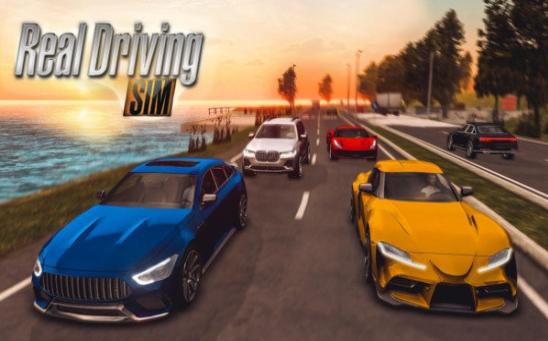 真实汽车模拟驾驶2020截图