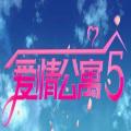 爱情公寓5互动游戏