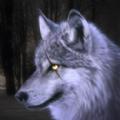 狼模拟器3D